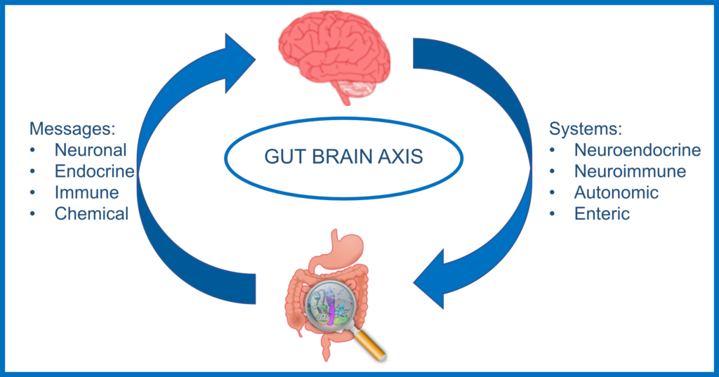 The Gut Brain Axis – Messages and Systems